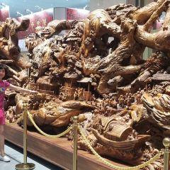 大興東旅遊世界用戶圖片