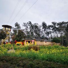 다리앙 지우좡 전원속의 낙원 여행 사진