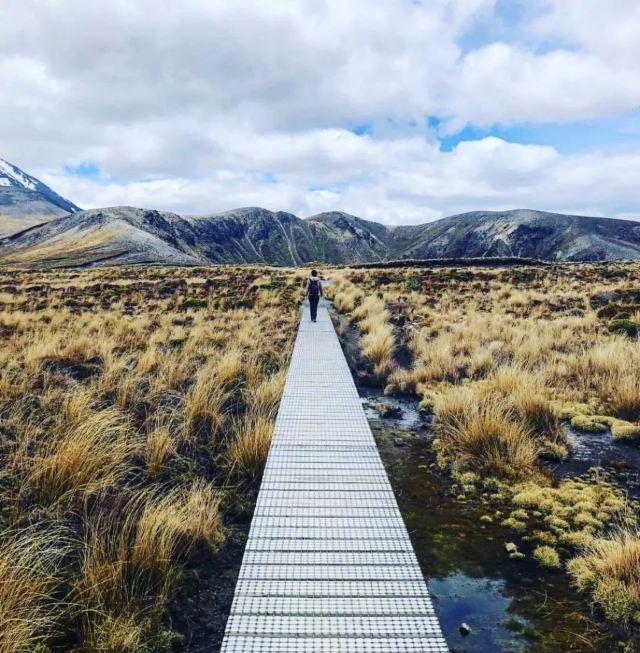 """別讓父母獨自鑽研""""啥是佩奇""""了,陪他們來探索紐西蘭吧"""