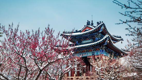 Meihuashan