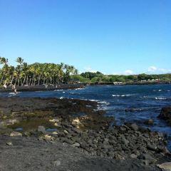 普納魯吾黑沙海灘用戶圖片