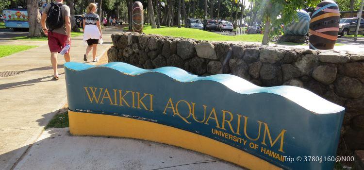 Waikiki Aquarium1