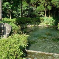 시라카와 수원지 여행 사진