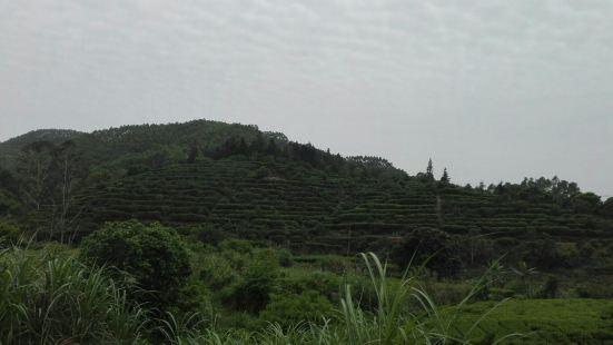 Nanmei Ridge