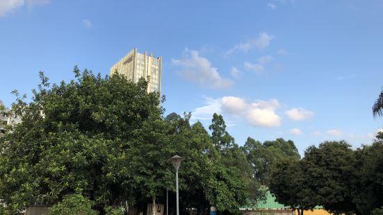 Yangtao Park