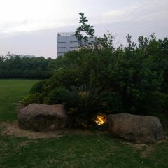 Sanxiang Park User Photo
