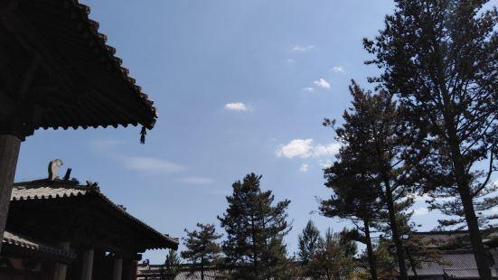 雲崗森林公園