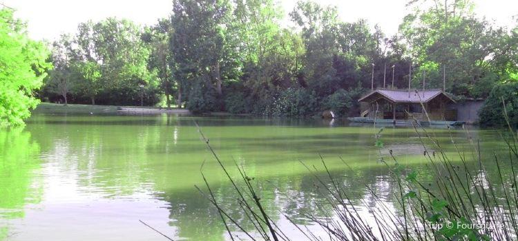 博雷利公園1
