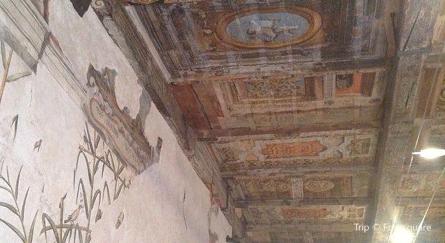 Museo di Palazzo Poggi1