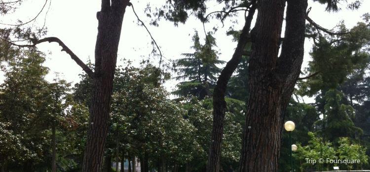 Chalet Giardini Margherita1