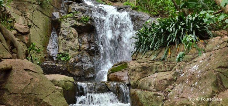 普利托裡亞植物園3