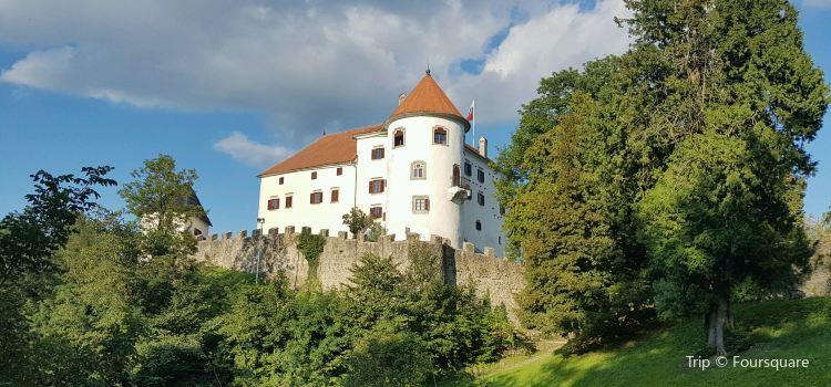 Velenje Castle1