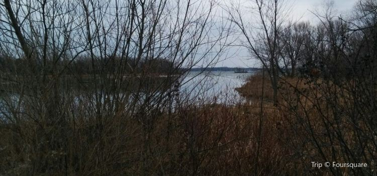 Upper Canada Migratory Bird Sanctuary