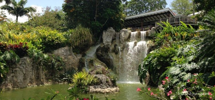 Jardin Botanique de Deshaies3