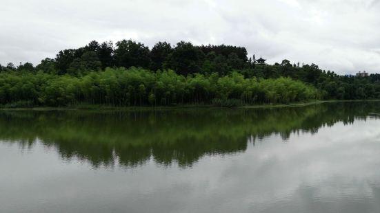Xinpuxinqu Wetland Park