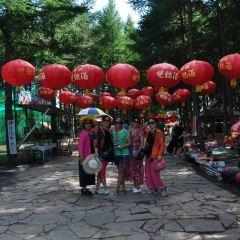 National Forest Park of Taohuajiang of Hunan User Photo
