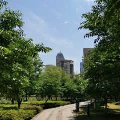 Suoshan Park User Photo
