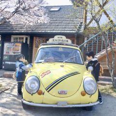 湯布院溫泉鎮用戶圖片
