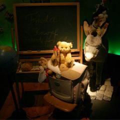 Teddy Bear Museum User Photo