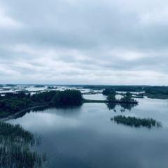 八五八千島林景區用戶圖片