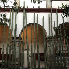 Templo de la Compa?ía de Jesús User Photo