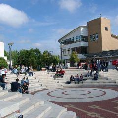 워릭 대학교 여행 사진