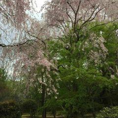 Noboribetsu Onsen Flower Tunnel User Photo