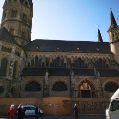Bonner Münster User Photo