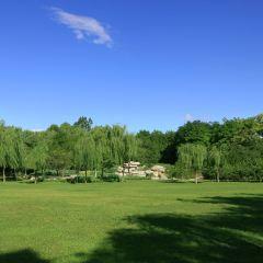 세기공원 여행 사진