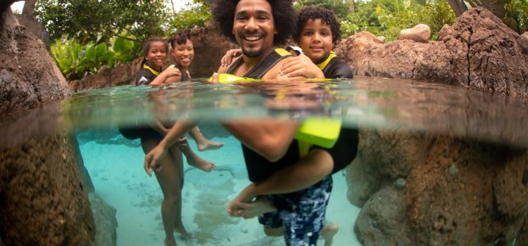 Discovery Cove2