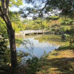 圓山公園用戶圖片