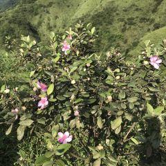 Mount Tianma User Photo