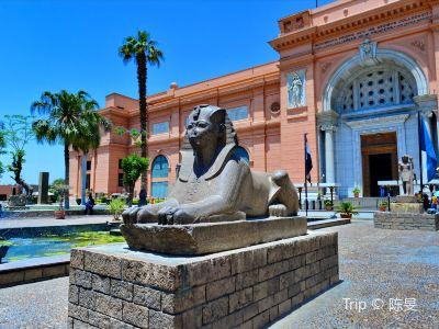 이집트 유물 박물관