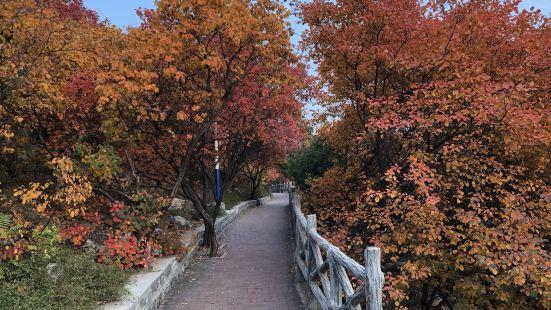 郎茂山公園