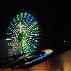 미라마 관람차 여행 사진