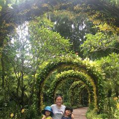 Singapore Botanic Gardens User Photo