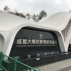 成都パンダエコパーク観光博物館のユーザー投稿写真