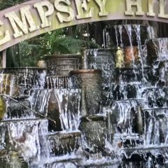 Dempsey Hill User Photo