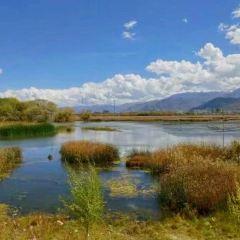 拉魯濕地自然保護區用戶圖片