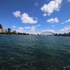 Sydney Harbor User Photo
