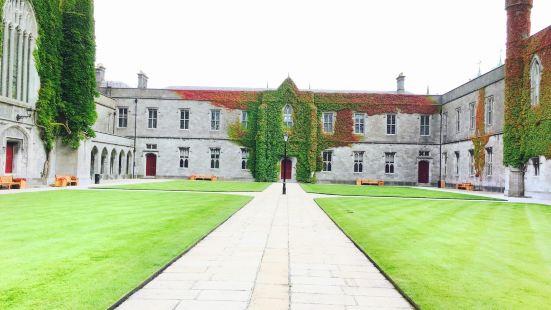 National University of Ireland-Galway (UCG)
