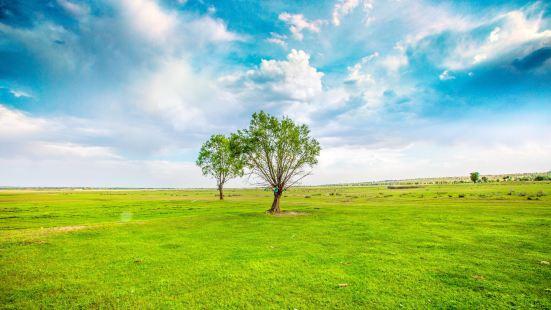 蘇泊罕大草原旅遊景區