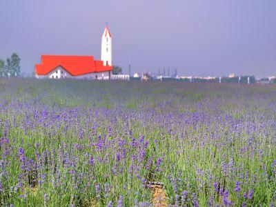 칭다오 서해안 생태관광공원