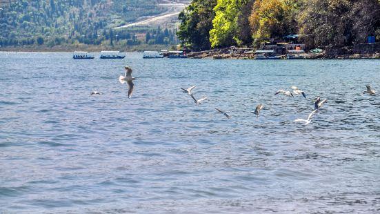 Fuxian Lake