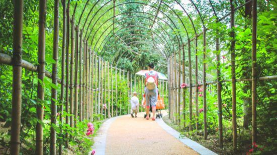 Zunyishi Botanical Garden