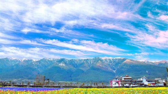 雲海芳草千畝花卉博覽園