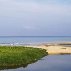 卡倫海灘用戶圖片
