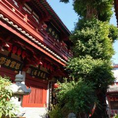 Kouchi Naos User Photo
