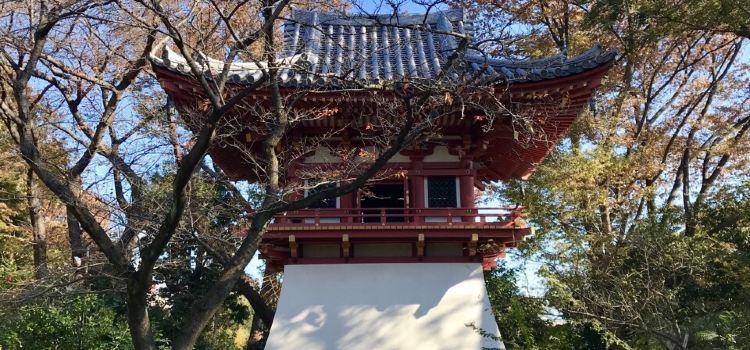 나라 료센지 절