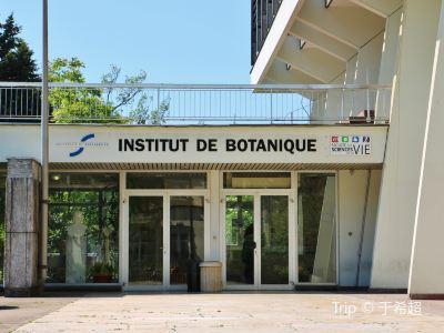 Botanical Gardens of Strasbourg University